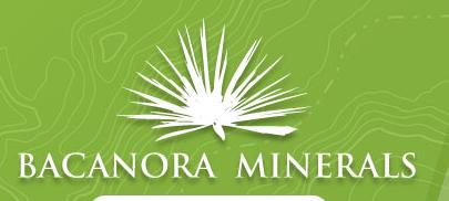Bacanora Minerals